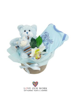Teddy Time plush bear (hypo-allergenic & baby-safe),
