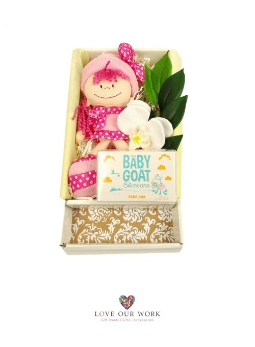 A gift box teddy time plush girl in pink (hypo-allergenic & baby safe)
