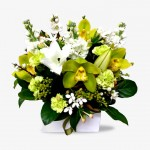 Long Pot Arrangement of Harmony Lime & Whites