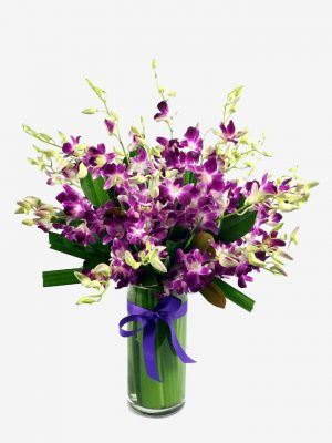 Pretty and bright Singapore Orchids in leaf lined vase
