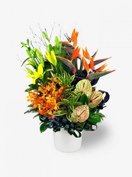 Sumptuous Tropical Arrangement