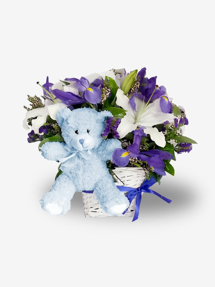 Newborn baby gifts gift sets for boy girl baby boy gift basket arrangement blue flower bear negle Image collections
