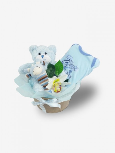 New Baby Boy Comfort Basket